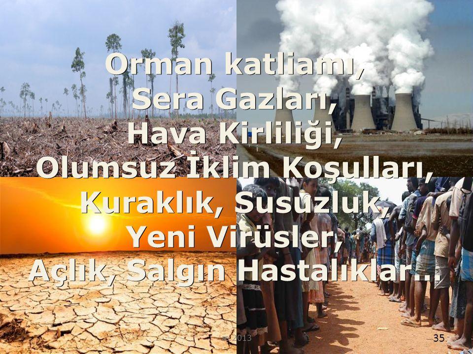 35 Orman katliamı, Sera Gazları, Hava Kirliliği, Olumsuz İklim Koşulları, Kuraklık, Susuzluk, Yeni Virüsler, Açlık, Salgın Hastalıklar… 35 æ.2013