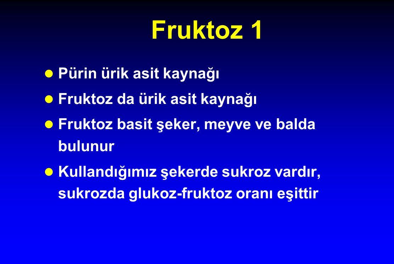 Fruktoz 1 l Pürin ürik asit kaynağı l Fruktoz da ürik asit kaynağı l Fruktoz basit şeker, meyve ve balda bulunur l Kullandığımız şekerde sukroz vardır