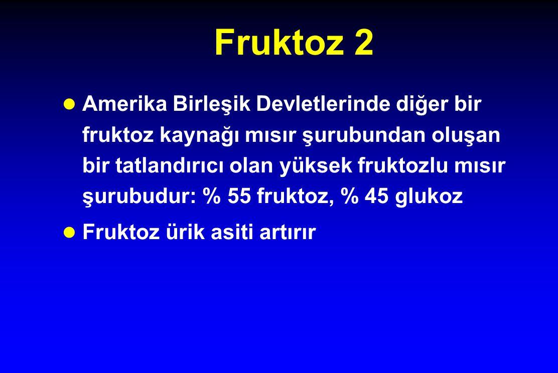 Fruktoz 2 l Amerika Birleşik Devletlerinde diğer bir fruktoz kaynağı mısır şurubundan oluşan bir tatlandırıcı olan yüksek fruktozlu mısır şurubudur: %