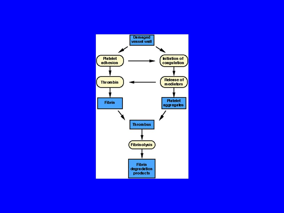 Plazmin inhibitörleri Antitrombin III Alfa-antiplazmin
