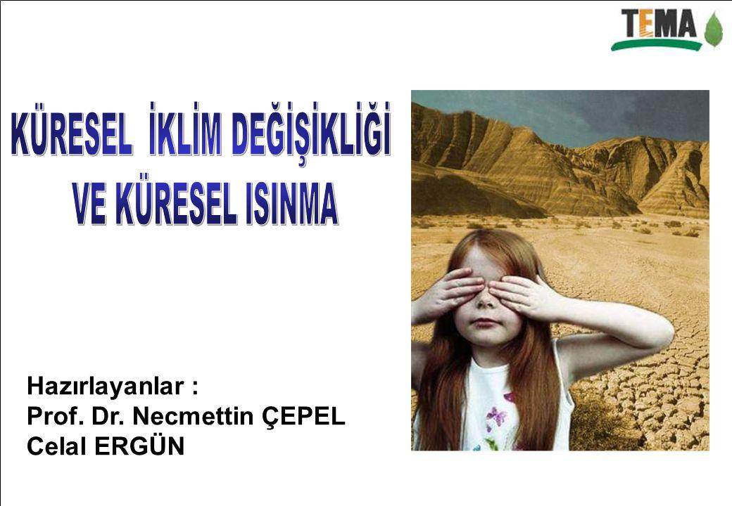 Hazırlayanlar : Prof. Dr. Necmettin ÇEPEL Celal ERGÜN