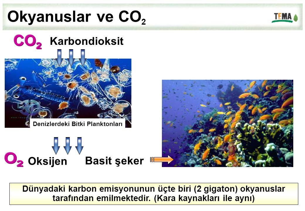 Okyanuslar ve CO 2 Dünyadaki karbon emisyonunun üçte biri (2 gigaton) okyanuslar tarafından emilmektedir. (Kara kaynakları ile aynı) Denizlerdeki Bitk