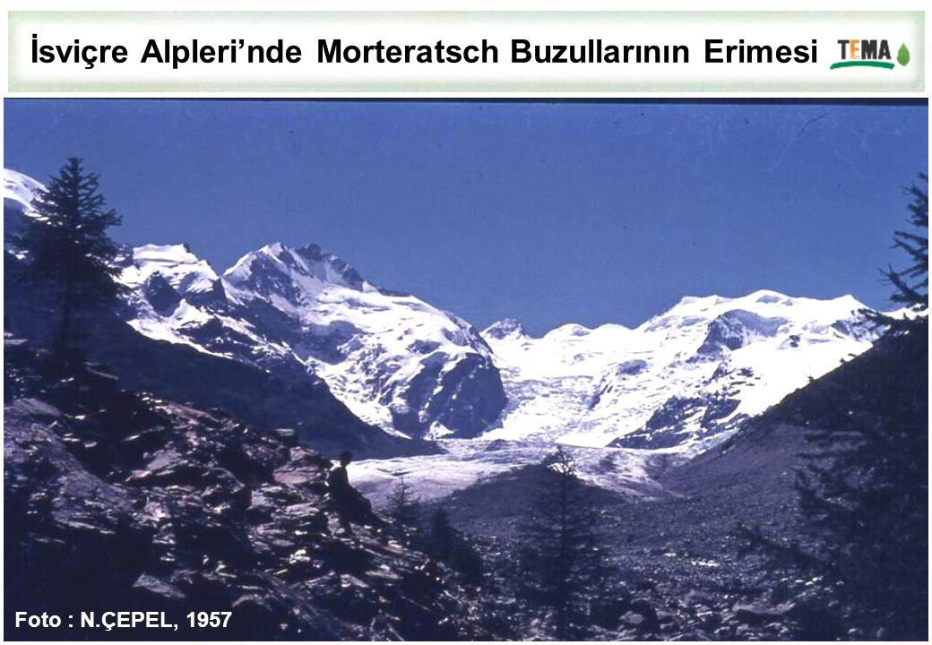 İsviçre Alpleri'nde Morteratsch Buzullarının Erimesi Foto : N.ÇEPEL, 1957