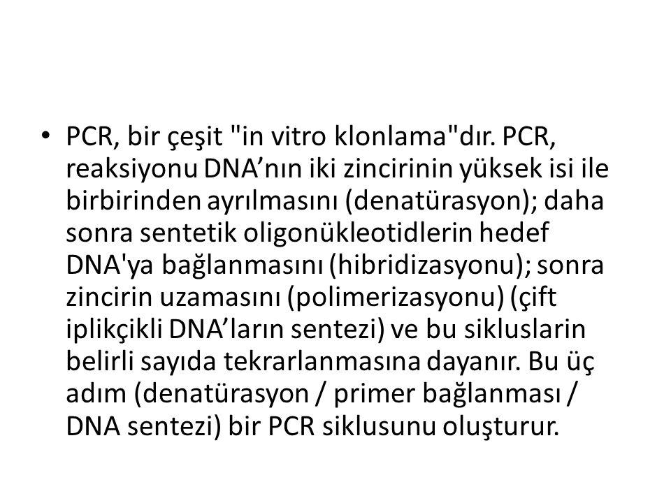 PCR, bir çeşit