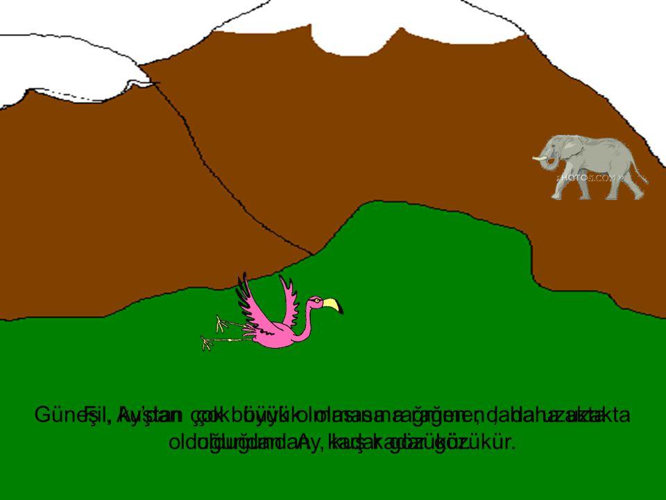 Fil, kuştan çok büyük olmasına rağmen ; daha uzakta olduğundan, kuş kadar gözükür. Güneş, Ay'dan çok büyük olmasına rağmen ; daha uzakta olduğundan Ay