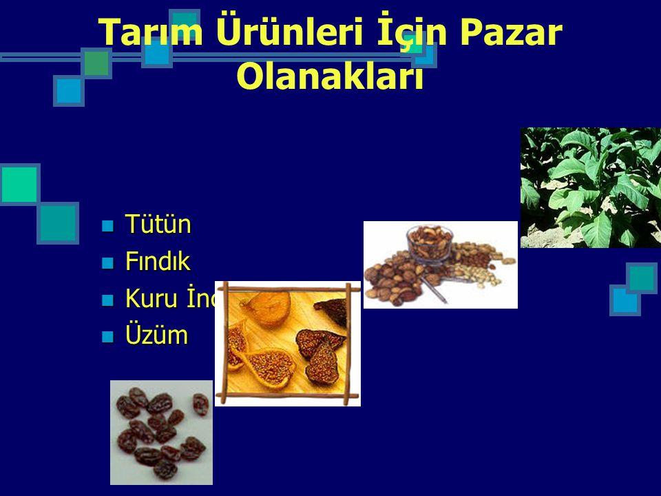 Tarım Ürünleri İçin Pazar Olanakları Tütün Tütün Fındık Fındık Kuru İncir Kuru İncir Üzüm Üzüm