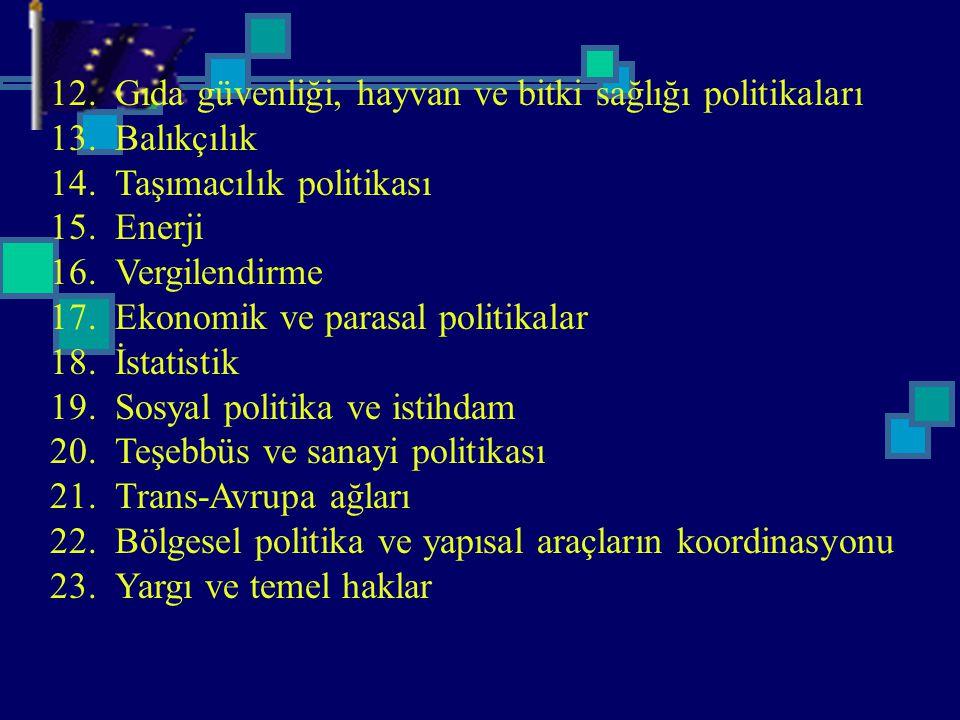 12. Gıda güvenliği, hayvan ve bitki sağlığı politikaları 13. Balıkçılık 14. Taşımacılık politikası 15. Enerji 16. Vergilendirme 17. Ekonomik ve parasa