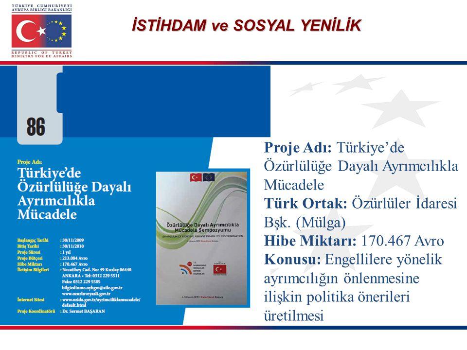 İSTİHDAM ve SOSYAL YENİLİK Proje Adı: Türkiye'de Özürlülüğe Dayalı Ayrımcılıkla Mücadele Türk Ortak: Özürlüler İdaresi Bşk. (Mülga) Hibe Miktarı: 170.