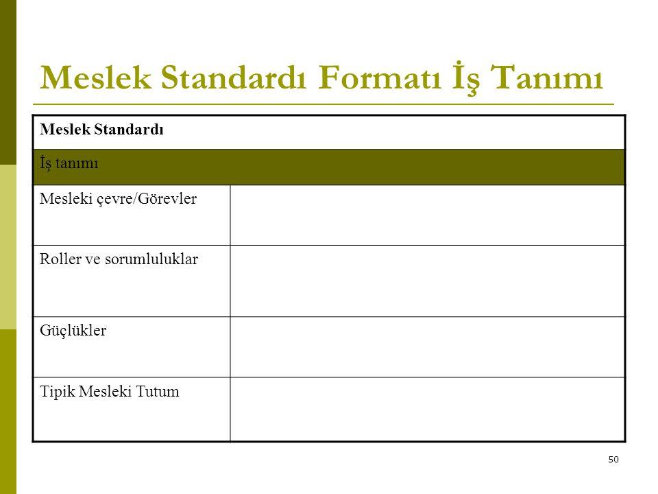 50 Meslek Standardı Formatı İş Tanımı Meslek Standardı İş tanımı Mesleki çevre/Görevler Roller ve sorumluluklar Güçlükler Tipik Mesleki Tutum