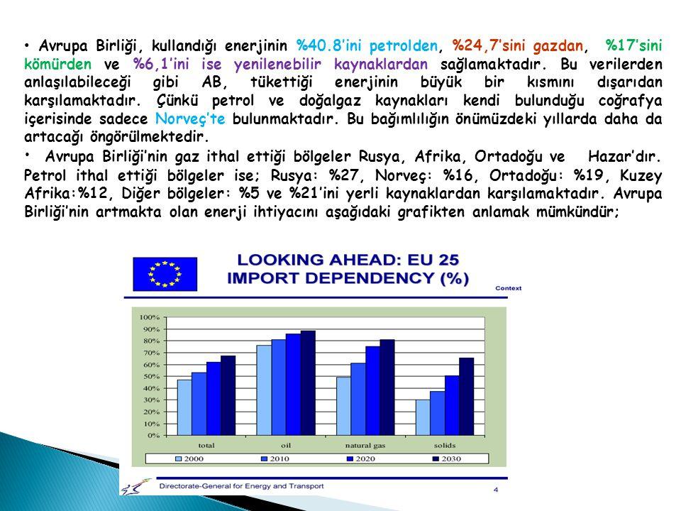 Avrupa Birliği, kullandığı enerjinin %40.8'ini petrolden, %24,7'sini gazdan, %17'sini kömürden ve %6,1'ini ise yenilenebilir kaynaklardan sağlamaktadır.