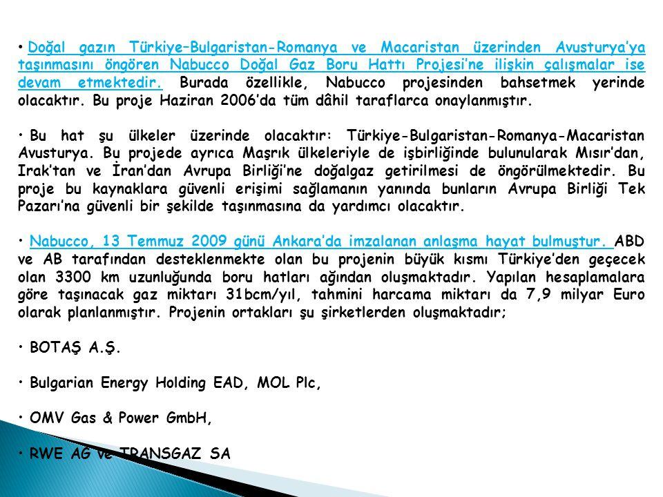Doğal gazın Türkiye–Bulgaristan-Romanya ve Macaristan üzerinden Avusturya'ya taşınmasını öngören Nabucco Doğal Gaz Boru Hattı Projesi'ne ilişkin çalışmalar ise devam etmektedir.