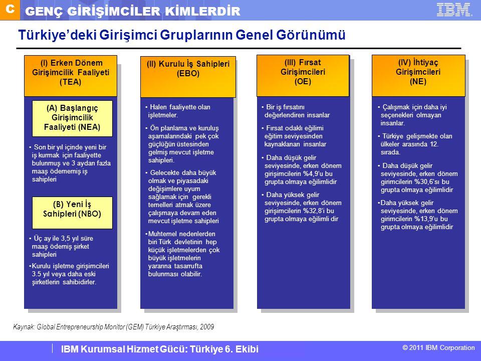 IBM Corporate Service Corps : Turkey Team 6 © 2011 IBM Corporation IBM Kurumsal Hizmet Gücü: Türkiye 6. Ekibi (II) Kurulu İş Sahipleri (EBO) (III) Fır