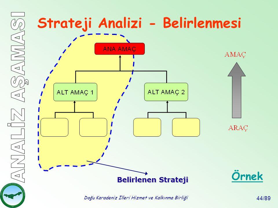Doğu Karadeniz İlleri Hizmet ve Kalkınma Birliği 44/89 Strateji Analizi - Belirlenmesi Örnek Belirlenen Strateji