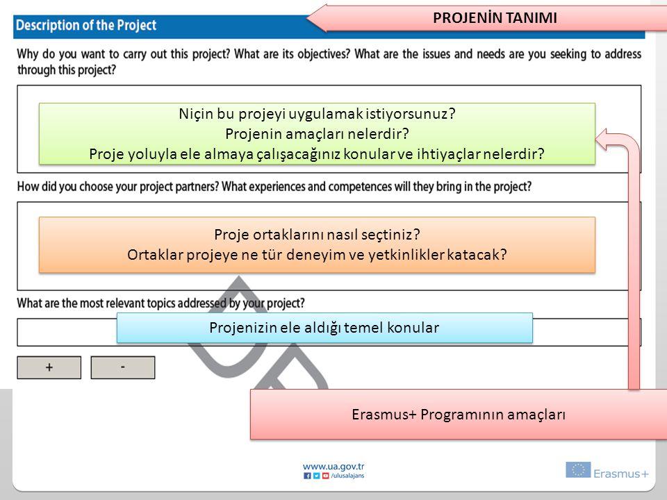 Niçin bu projeyi uygulamak istiyorsunuz.Projenin amaçları nelerdir.