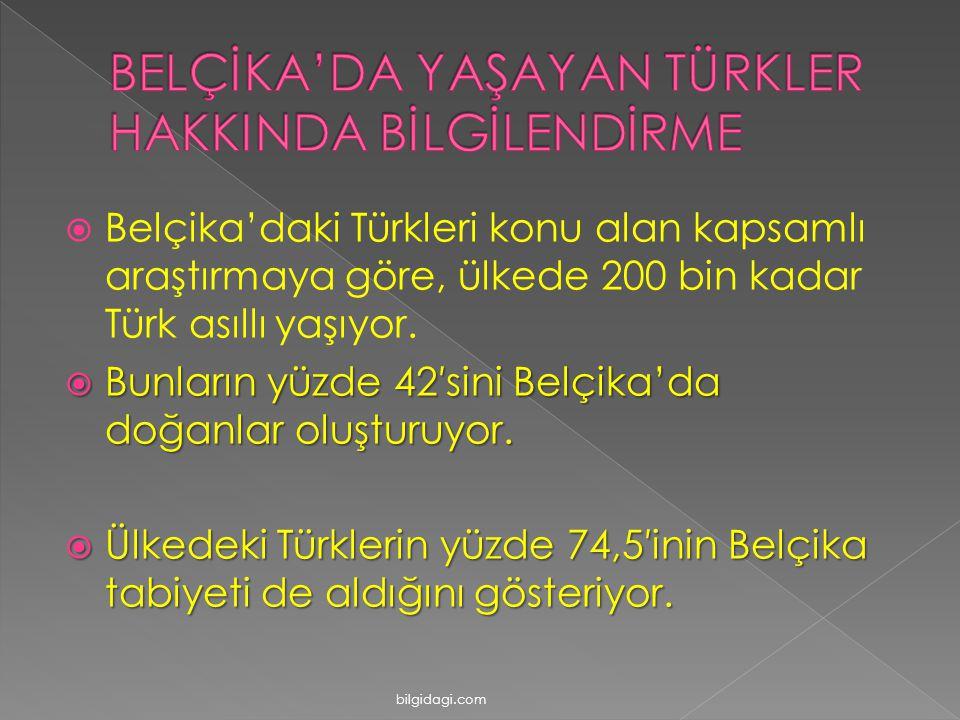  Belçika'daki Türkleri konu alan kapsamlı araştırmaya göre, ülkede 200 bin kadar Türk asıllı yaşıyor.  Bunların yüzde 42′sini Belçika'da doğanlar ol