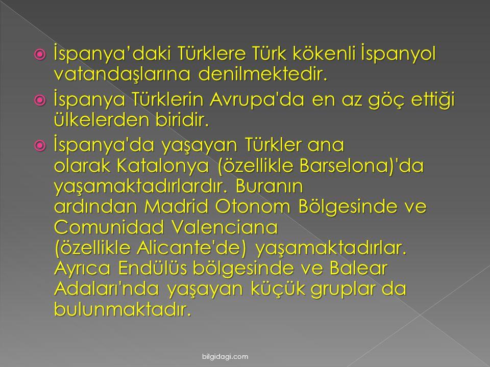  İspanya'daki Türklere Türk kökenli İspanyol vatandaşlarına denilmektedir.  İspanya Türklerin Avrupa'da en az göç ettiği ülkelerden biridir.  İspan
