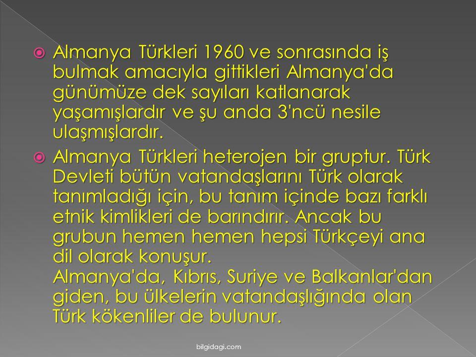  Almanya Türkleri 1960 ve sonrasında iş bulmak amacıyla gittikleri Almanya da günümüze dek sayıları katlanarak yaşamışlardır ve şu anda 3 ncü nesile ulaşmışlardır.