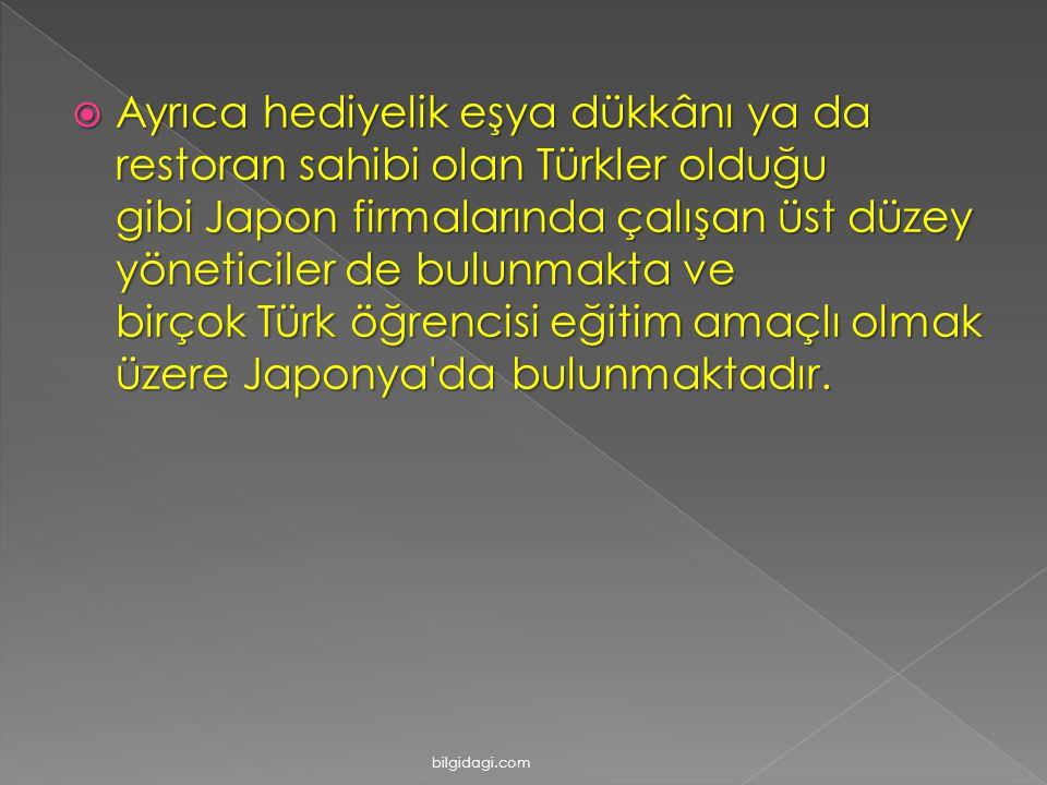  Ayrıca hediyelik eşya dükkânı ya da restoran sahibi olan Türkler olduğu gibi Japon firmalarında çalışan üst düzey yöneticiler de bulunmakta ve birço