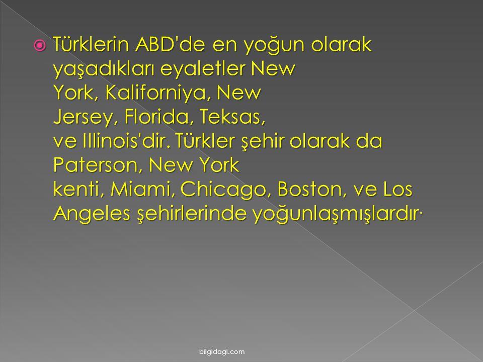  Türklerin ABD de en yoğun olarak yaşadıkları eyaletler New York, Kaliforniya, New Jersey, Florida, Teksas, ve Illinois dir.