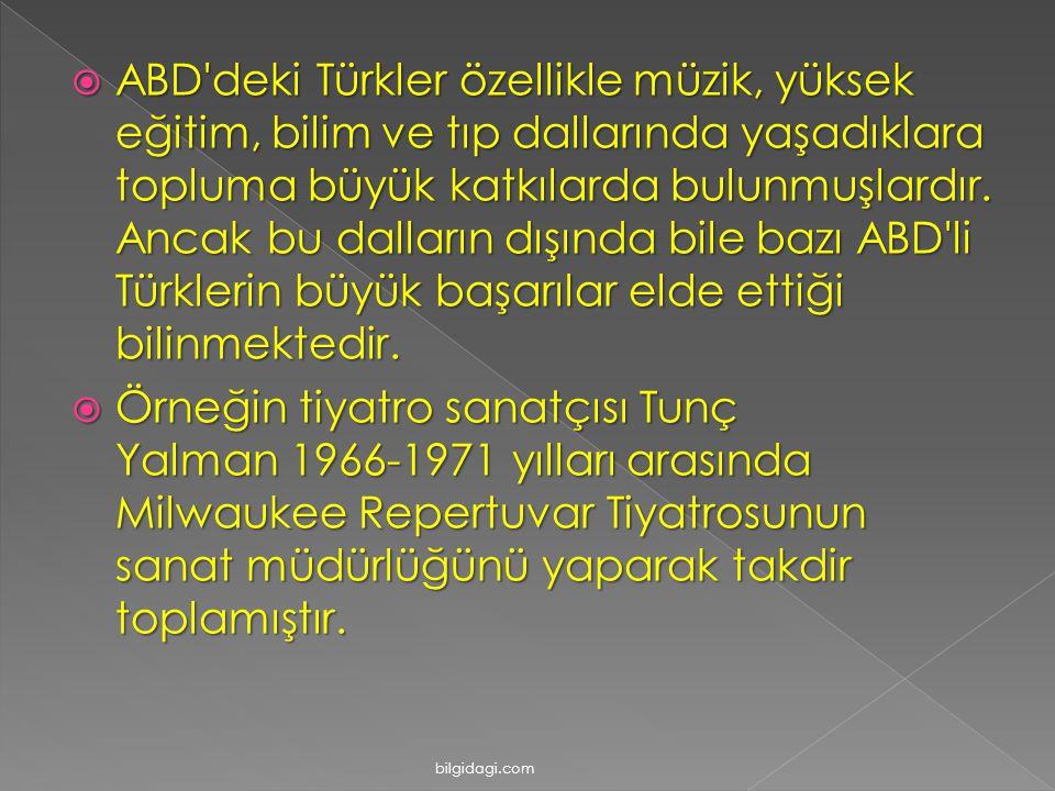 AAAABD'deki Türkler özellikle müzik, yüksek eğitim, bilim ve tıp dallarında yaşadıklara topluma büyük katkılarda bulunmuşlardır. Ancak bu dalların