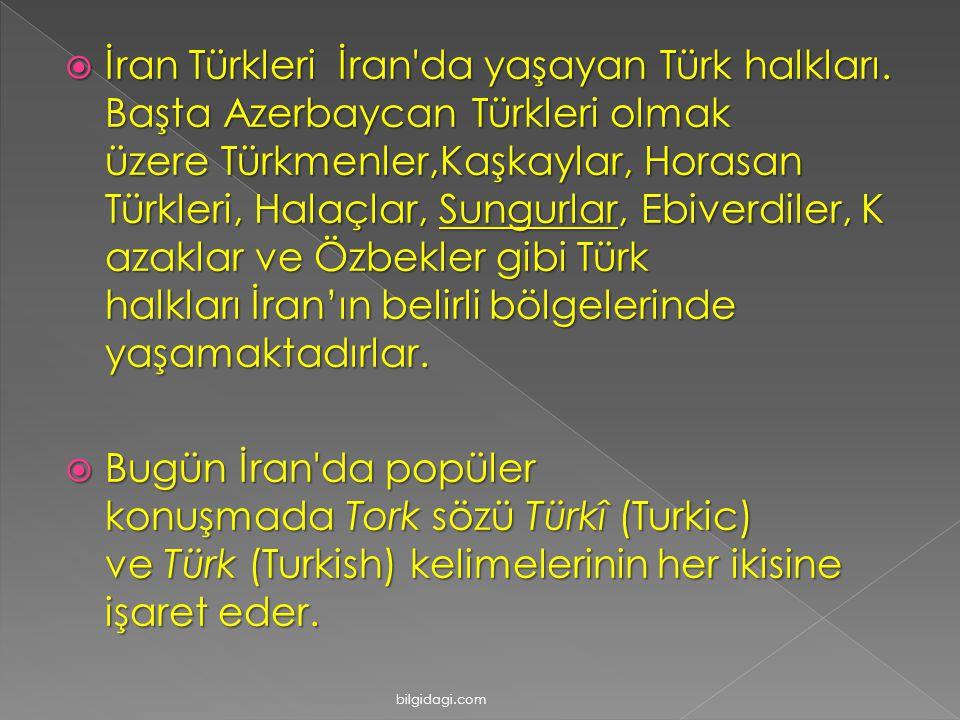  İran Türkleri İran'da yaşayan Türk halkları. Başta Azerbaycan Türkleri olmak üzere Türkmenler,Kaşkaylar, Horasan Türkleri, Halaçlar, Sungurlar, Ebiv