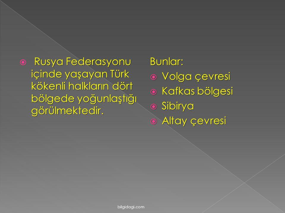 Rusya Federasyonu içinde yaşayan Türk kökenli halkların dört bölgede yoğunlaştığı görülmektedir.