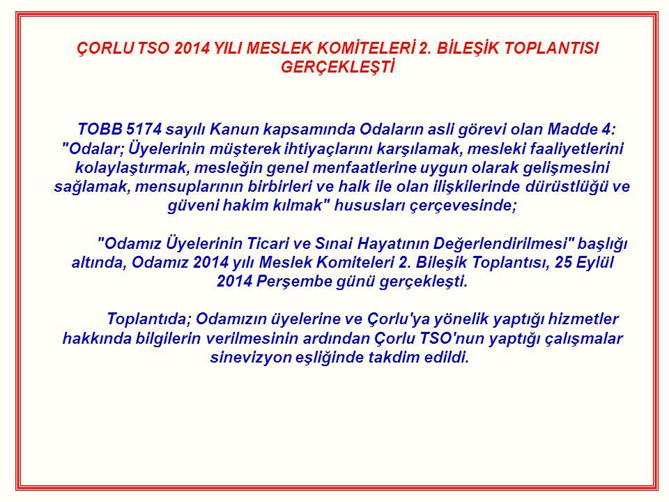 ÇORLU TSO 2014 YILI MESLEK KOMİTELERİ 2.