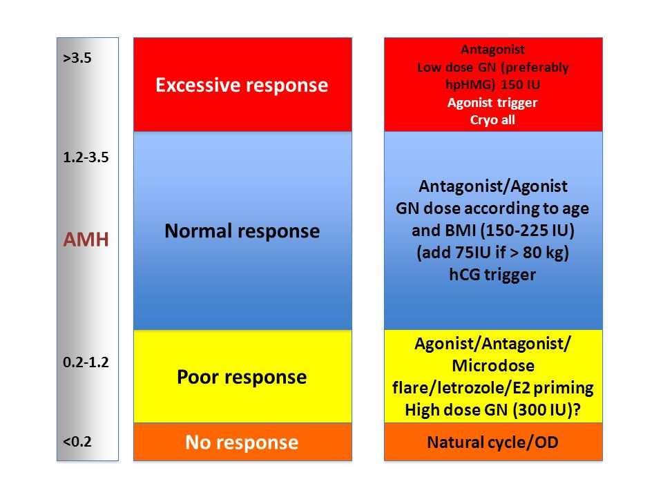 No response Poor response Normal response Excessive response >3.5 1.2-3.5 AMH 0.2-1.2 <0.2 >3.5 1.2-3.5 AMH 0.2-1.2 <0.2 Antagonist Low dose GN (prefe