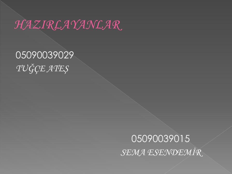 05090039029 TUĞÇE ATEŞ 05090039015 SEMA ESENDEMİR