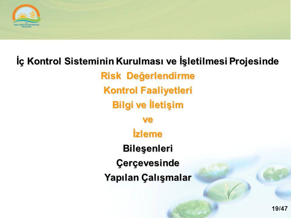 İç Kontrol Sisteminin Kurulması ve İşletilmesi Projesinde Risk Değerlendirme Kontrol Faaliyetleri Bilgi ve İletişim ve İzleme Bileşenleri Çerçevesinde