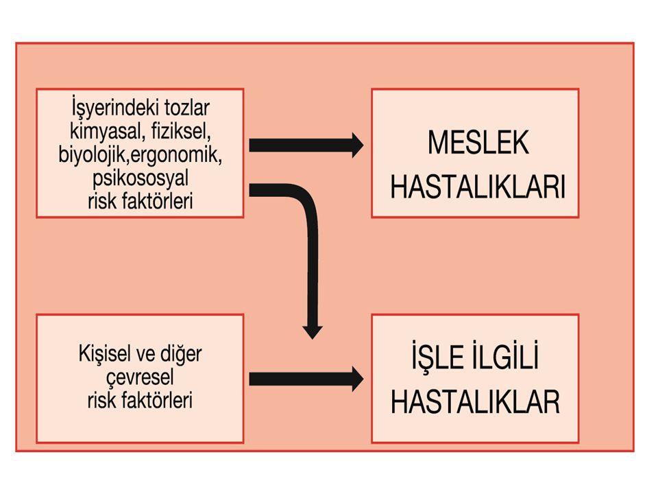 Meslek Hastalıklarının Sınıflandırılması ILO Meslek Hastalıkları Listesinde meslek hastalıkları dört kategoride toplanmaktadır: 1.Ajanlarla meydana gelen meslek hastalıkları (fiziksel, kimyasal ve biyolojik), 2.Hedef organ ve sistemlerin meslek hastalıkları ( solunum, deri, kas iskelet, zihinsel ve davranışsal), 3.Mesleki kanserler, 4.Diğer Hastalıklar.