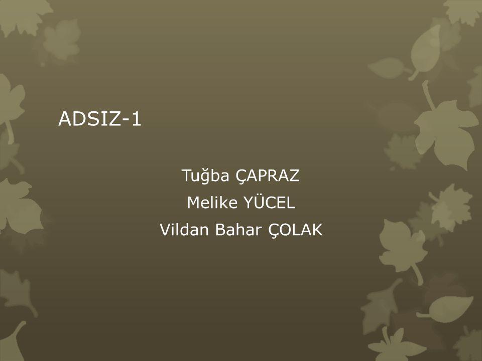 ADSIZ-1 Tuğba ÇAPRAZ Melike YÜCEL Vildan Bahar ÇOLAK