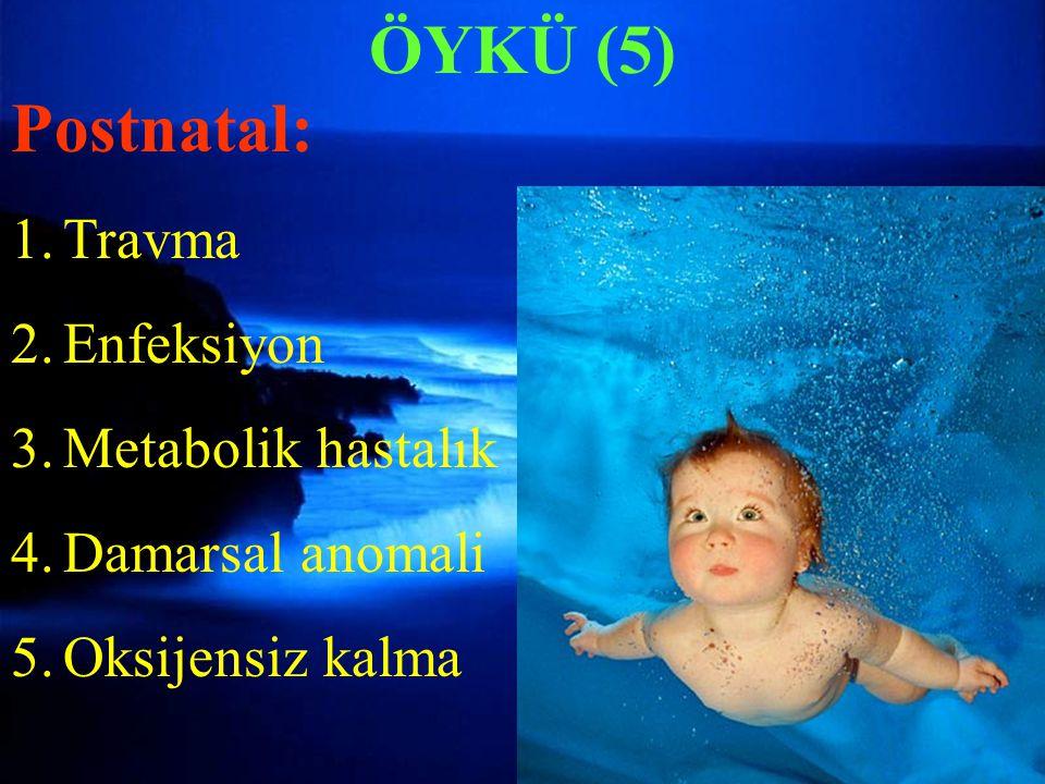ÖYKÜ (5) Postnatal: 1.Travma 2.Enfeksiyon 3.Metabolik hastalık 4.Damarsal anomali 5.Oksijensiz kalma ÖYKÜ (5)