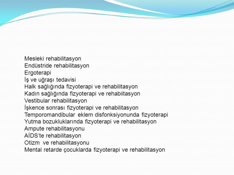 Mesleki rehabilitasyon Endüstride rehabilitasyon Ergoterapi İş ve uğraşı tedavisi Halk sağlığında fizyoterapi ve rehabilitasyon Kadın sağlığında fizyo