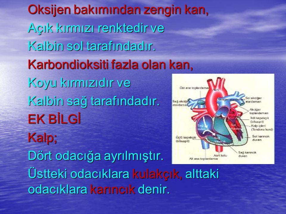 Oksijen bakımından zengin kan, Oksijen bakımından zengin kan, Açık kırmızı renktedir ve Açık kırmızı renktedir ve Kalbin sol tarafındadır.