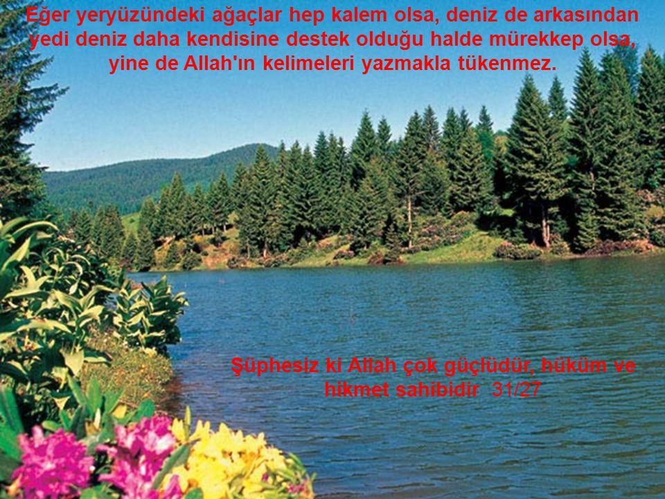 Eğer yeryüzündeki ağaçlar hep kalem olsa, deniz de arkasından yedi deniz daha kendisine destek olduğu halde mürekkep olsa, yine de Allah'ın kelimeleri