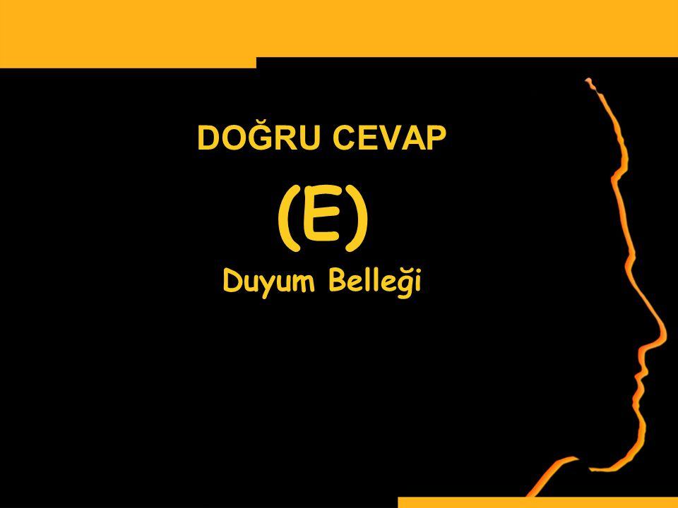 www.ismailbilgin.com DOĞRU CEVAP (E) Duyum Belleği