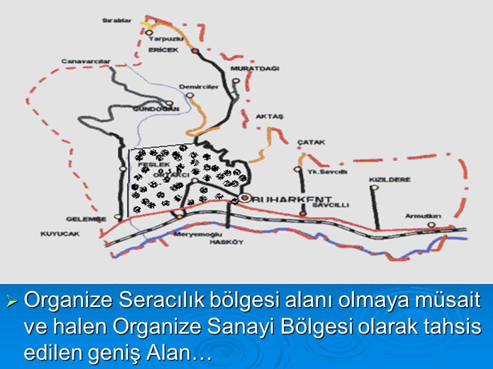  Organize Seracılık bölgesi alanı olmaya müsait ve halen Organize Sanayi Bölgesi olarak tahsis edilen geniş Alan…