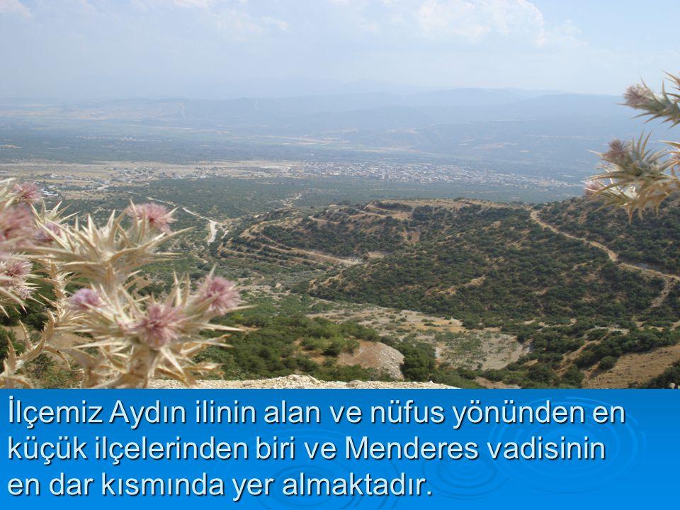 İlçemiz Aydın ilinin alan ve nüfus yönünden en küçük ilçelerinden biri ve Menderes vadisinin en dar kısmında yer almaktadır.