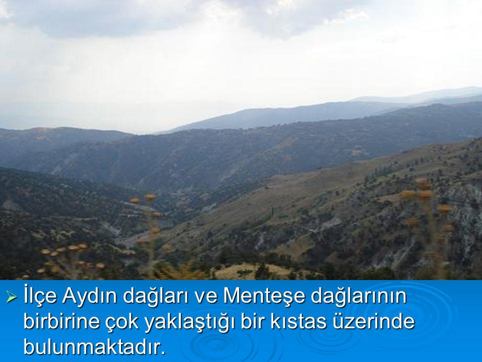 İlimizin doğusunda yer alan İlçemizin doğusu ve güneyi Denizli-Sarayköy, kuzeydoğusu Denizli- Buldan, batısı ve kuzeyi Aydın-Kuyucak ilçeleri ile sınırlanmıştır.
