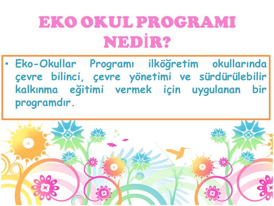Eko-Okullar Programı ilköğretim okullarında çevre bilinci, çevre yönetimi ve sürdürülebilir kalkınma eğitimi vermek için uygulanan bir programdır. EKO