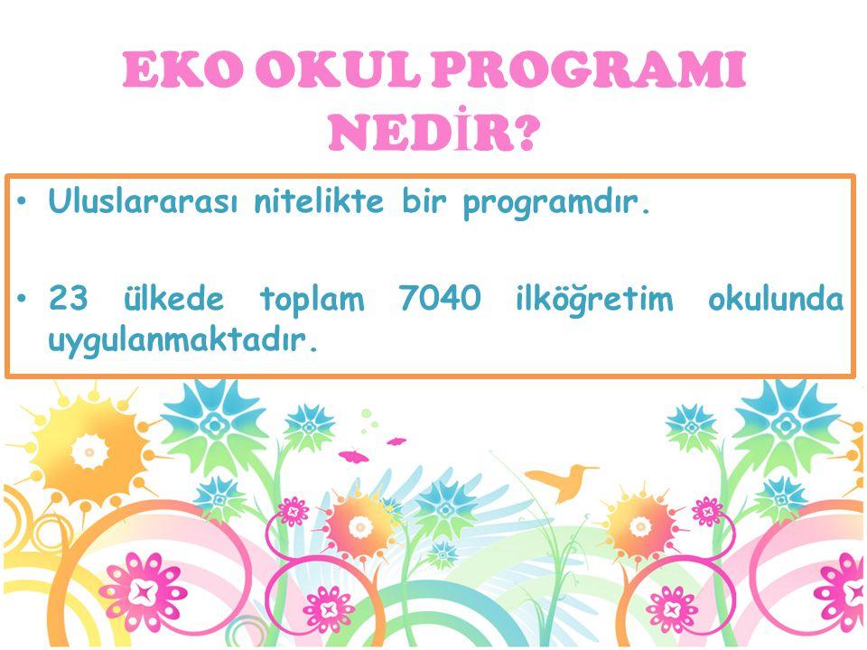 Uluslararası nitelikte bir programdır. 23 ülkede toplam 7040 ilköğretim okulunda uygulanmaktadır. EKO OKUL PROGRAMI NED İ R?