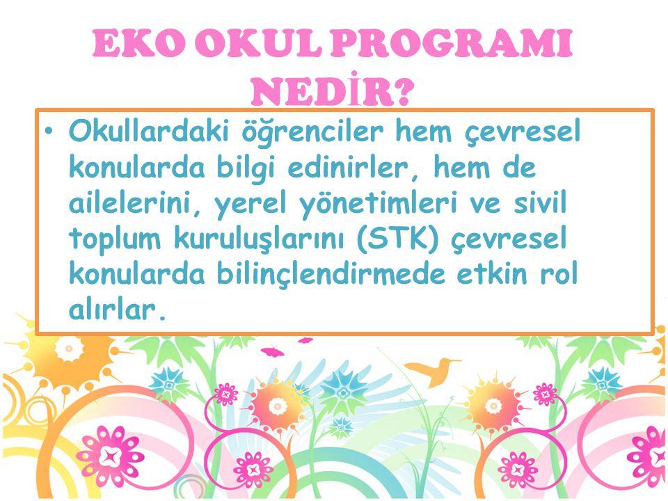 Okullardaki öğrenciler hem çevresel konularda bilgi edinirler, hem de ailelerini, yerel yönetimleri ve sivil toplum kuruluşlarını (STK) çevresel konul
