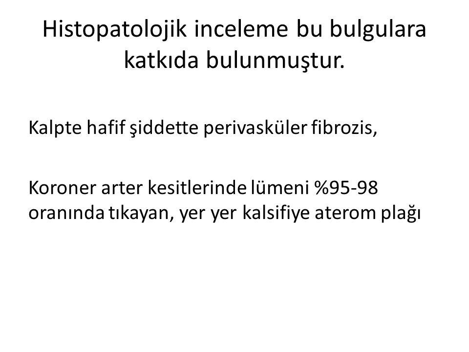 Histopatolojik inceleme bu bulgulara katkıda bulunmuştur.