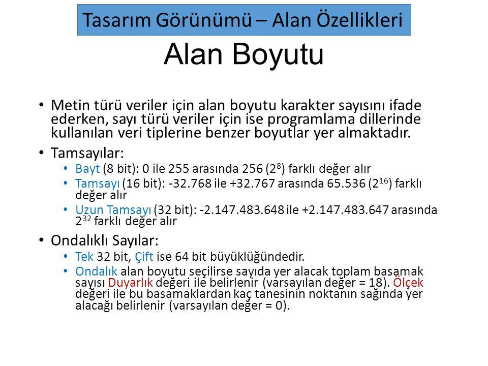 Alan Boyutu Metin türü veriler için alan boyutu karakter sayısını ifade ederken, sayı türü veriler için ise programlama dillerinde kullanılan veri tip