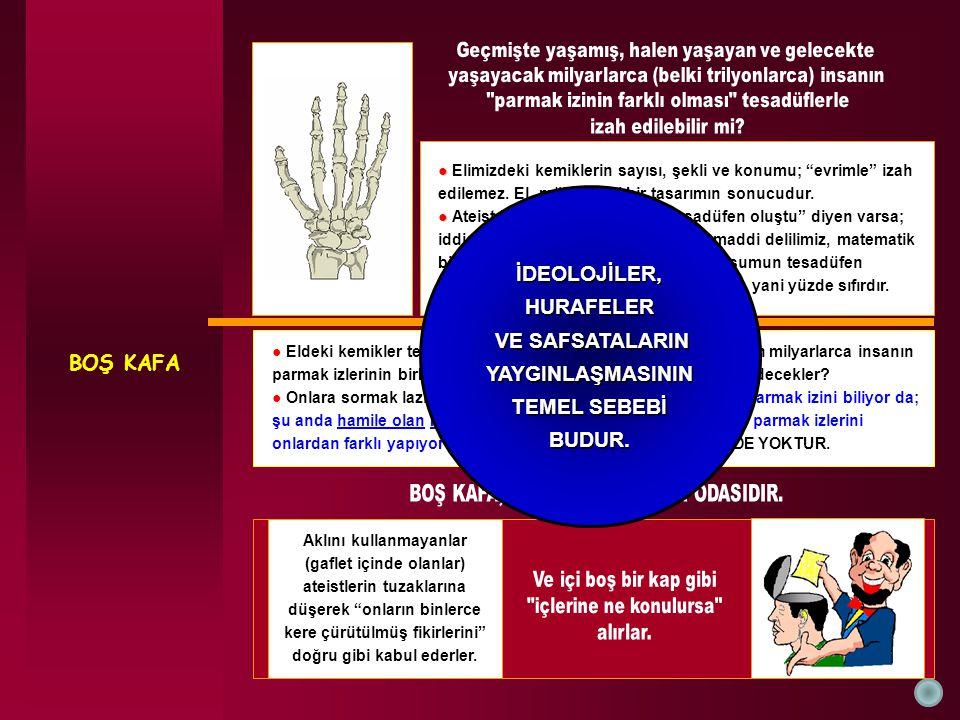 BOŞ KAFA ● ● Elimizdeki kemiklerin sayısı, şekli ve konumu; evrimle izah edilemez.