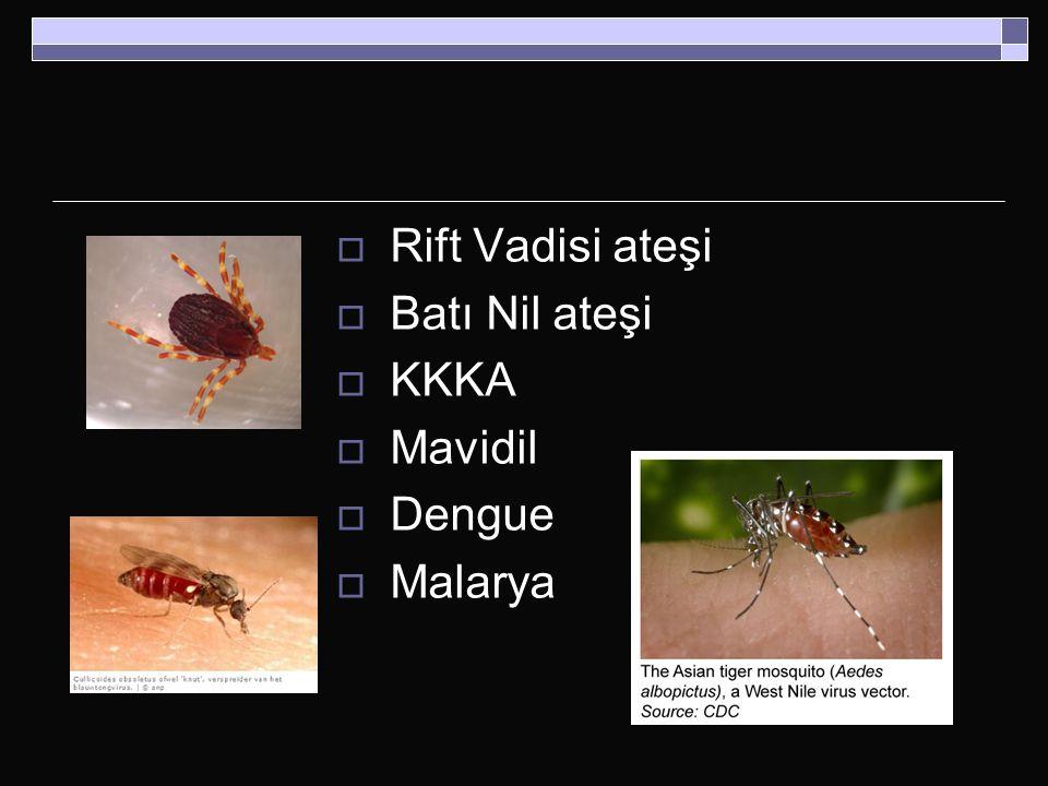  Rift Vadisi ateşi  Batı Nil ateşi  KKKA  Mavidil  Dengue  Malarya