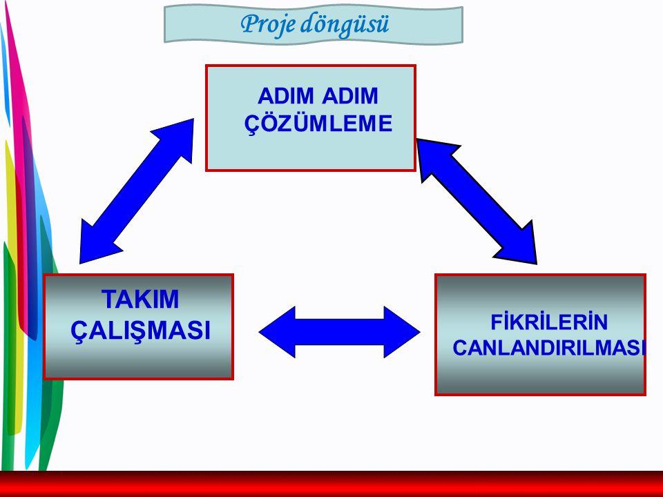 ADIM ADIM ÇÖZÜMLEME FİKRİLERİN CANLANDIRILMASI TAKIM ÇALIŞMASI Proje döngüsü