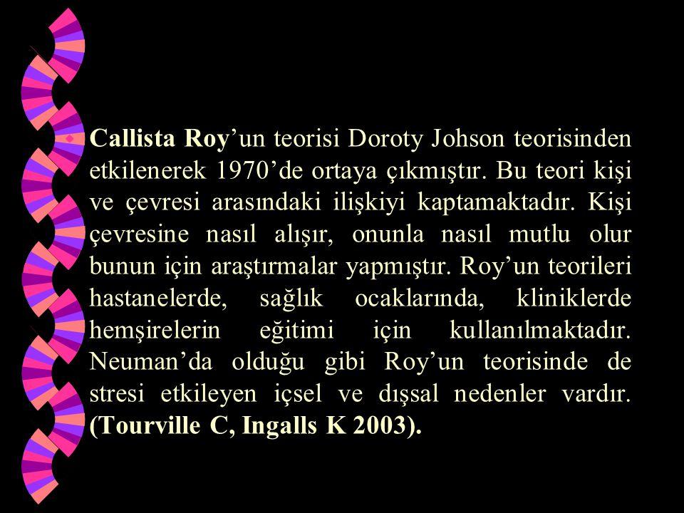 w Callista Roy'un teorisi Doroty Johson teorisinden etkilenerek 1970'de ortaya çıkmıştır. Bu teori kişi ve çevresi arasındaki ilişkiyi kaptamaktadır.
