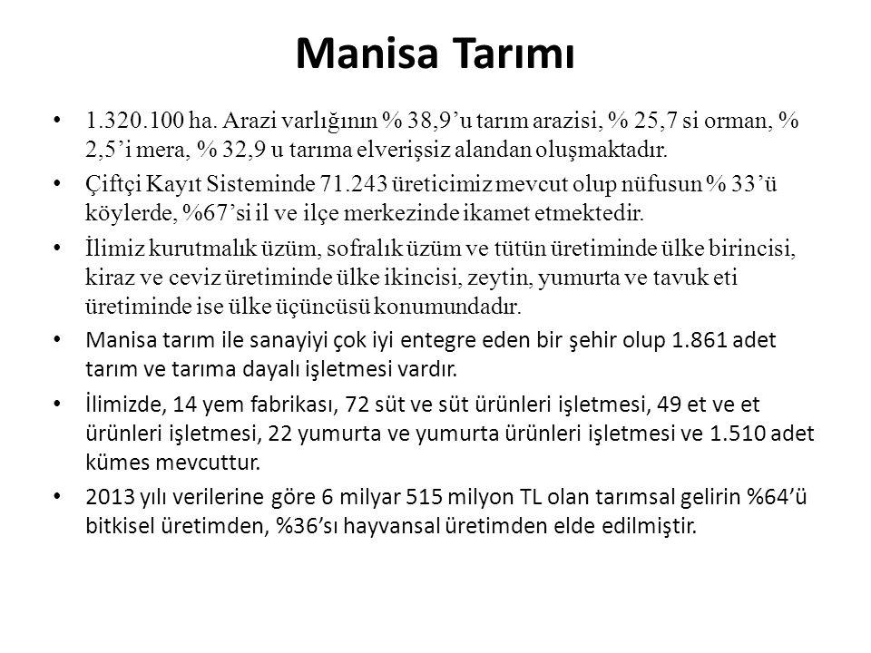 Manisa Tarımı 1.320.100 ha.